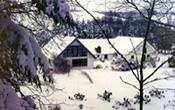 gaarden-vinter